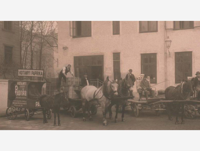 Fekete-fehér fénykép: Paprikát szállító lovaskocsi 1881-ben