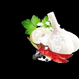 Pesto Peperoncini Kotanyi Detail Edit